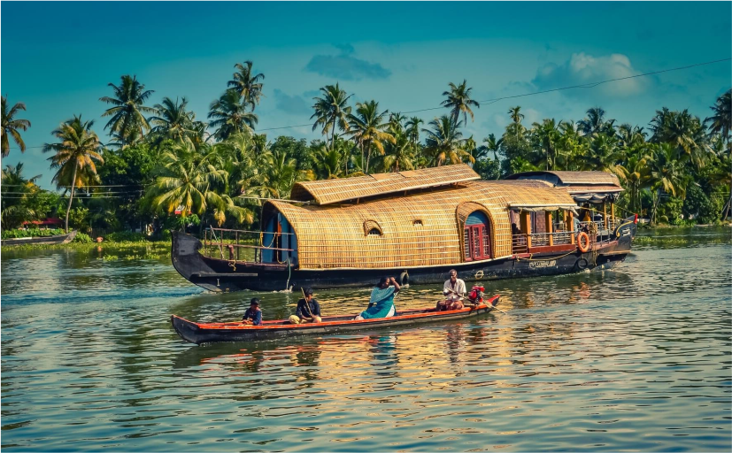 Things to Do in Kerala